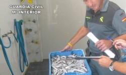 pescado-k00E-U40806241291cgG-624x450@Las Provincias