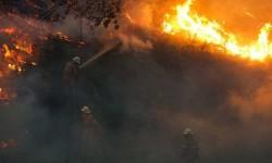Al menos 38 personas mueren en los incendios de Portugal, donde siguen activos más de 50 fuegos.