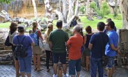 Dpto EDUCACIÓN BIOPARC Valencia - Encuentro con el profesorado - bosque ecuatorial