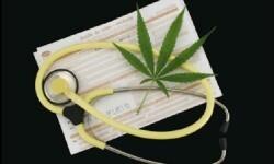El uso de la marihuana medicinal sigue creando controversia en el sector médico.
