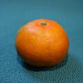 Foto mandarina Early pride