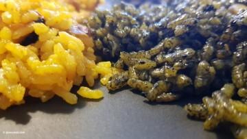 Jornadas Gastronómicas del Arroz Ciudad de Cullera (153)