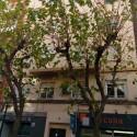 Todo preparado para la campaña de poda de moreras en València