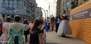 VIII Volta a Peu de les Falles Runners Ciutat de València 20171015_083752 (204)