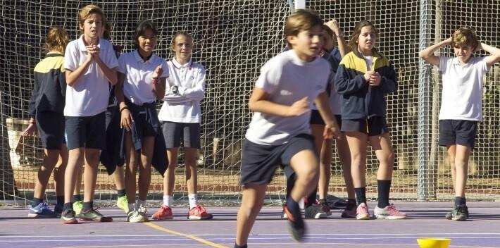 Durante las semanas previas se trabajan conceptos en diferentes materias y todos se suman a 'La Fiesta del Maratón' el 19 de noviembre.
