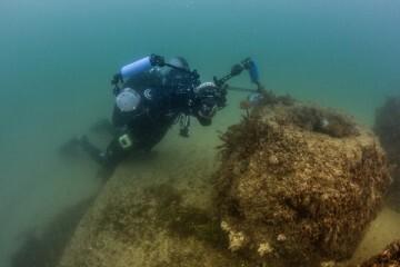 La FDM organiza un encuentro internacional sobre las oportunidades de los arrecifes artificiales.
