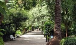 Se cierran al público los parques y jardines de Orriols, Polifilo, Aiora, monforte y Marxalenes por prealerta por fuerte viento.