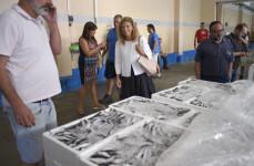 12-12-2017 Marco defensa la quota de pesca de sardina a Castelló davant el possible veto de la UE-1