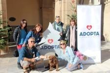 17-12-2017 Salut Pública promou una campanya social en favor de l'adopció de mascotes en Nadal