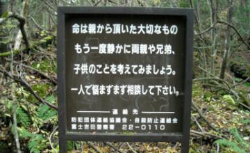 Aokigahara-4-385x235