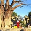 BIOPARC inicia la Navidad con la visita de Papa Noel.