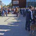 El desfile AUPA-BIOPARC el regalo de Navidad responsable para perros y personas.