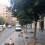 El Ayuntamiento empieza la recogida de la naranja amarga de las calles y plazas de la ciudad