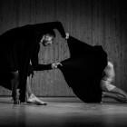 Arranca el 'VII Cicle Companyies Valencianes' de Sala Russafa, que hasta finales de abril ofrecerá seis propuestas teatrales y, por primera vez, incorpora tres de danza