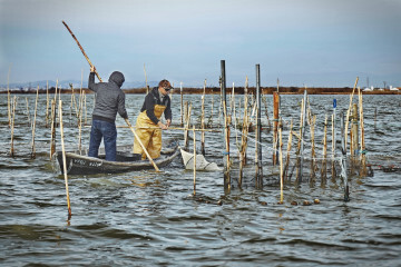 0210 Pesca artesanal