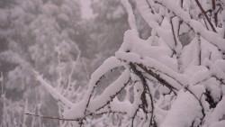 Emergencias alerta y recomienda precaución ante el temporal de nieve y viento previsto para este fin de semana en el interior de las provincias de Valencia y Castellón