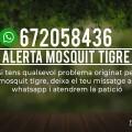 fotonoticia_20180216174841_640