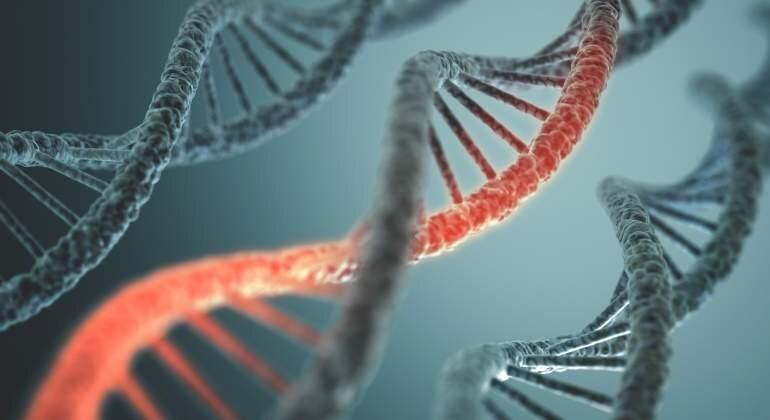 genes-adn-dreamstime