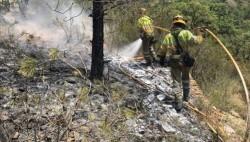 Incendio de Monte Picayo