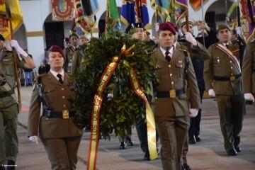 XXX edición de la Falla de las Fuerzas Armadas y Guardia Civil . (87)