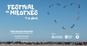 Cometas Festival
