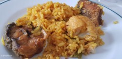Jornada gastronómica de la Llotja del Palmar (19)