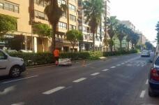 La Concejalía de Parques y Jardines ha iniciado hoy los trabajos de mantenimiento.
