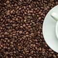 La-cafeina-empeora-la-ansiedad-asociada-al-alzheimer_image_380