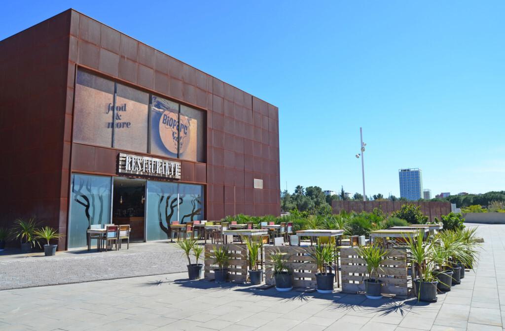 Restaurante BIOPARC Café - acceso plaza exterior - terraza