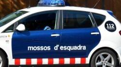 miosso_crop1519632178023.jpg_525981578