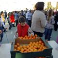 plan_consumo_fruta_escuelas_castellon_12
