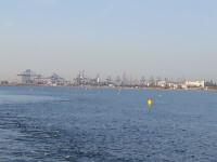 0515 Canal malva-rosa (2)