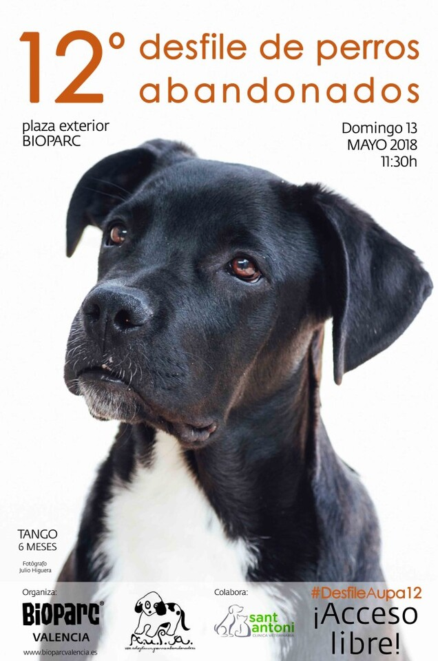 Cartel AUPA - 12 desfile perros - BIOPARC mayo 2018 bj