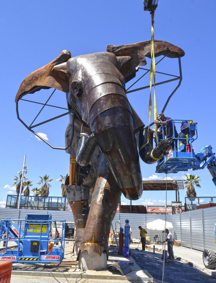 El majestuoso elefante de la plaza exterior de BIOPARC Valencia se llamará Escipión - Montaje colmillos - frontal