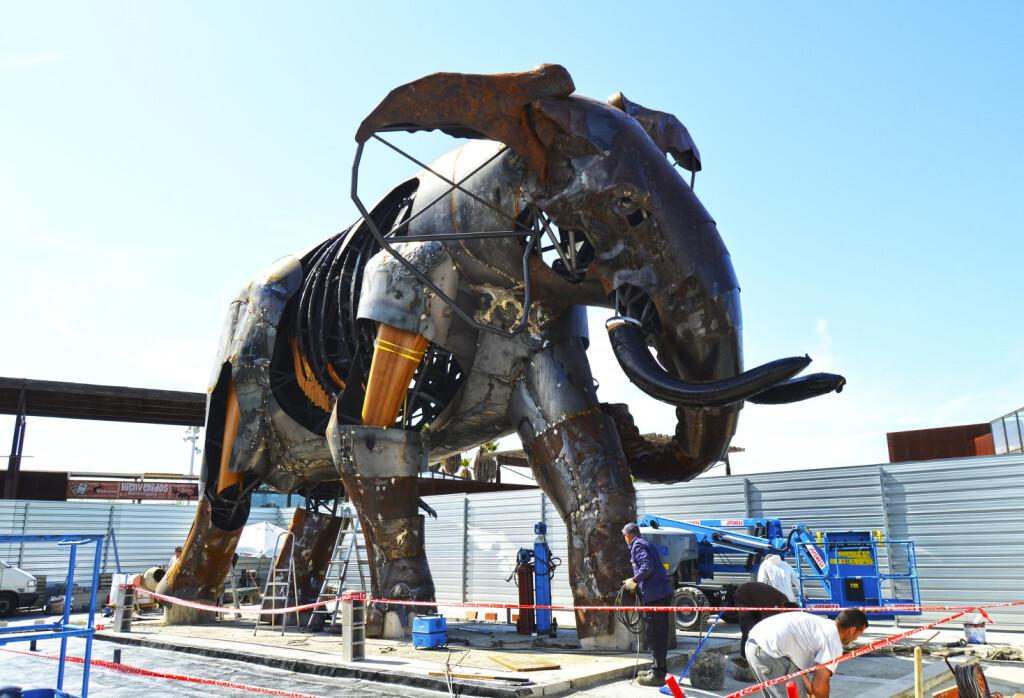 El majestuoso elefante de la plaza exterior de BIOPARC Valencia se llamará Escipión - Montaje colmillos - lateral