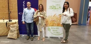 I CONCURS DE COCA CREATIVA I TRADICIONAL_2018 (108)