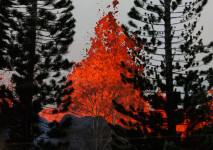 Kilauea Nuevas erupciones