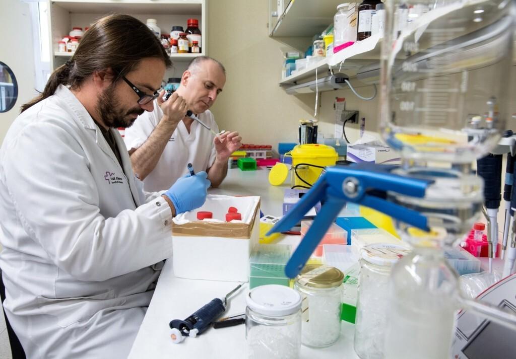 """Javier Torres (investigador del CIBERER) i Ramon Martí (investigador del CIBERER i responsable del laboratori de Patologia Mitocondrial del Vall d'Hebrón Institut de Recerca) al laboratorio. L'Obra Social """"la Caixa"""", el Centre d'Investigació Biomèdica en Xarxa de Malalties Rares (CIBERER) i la Fundació Mencía han signat un acord pel qual el Vall d'Hebron Institut de Recerca (VHIR) dugui a terme un estudi preclínic pioner d'una malaltia mitocondrial que servirà per a trobar possibles tractaments per aquesta patologia i contribuirà a millorar el coneixement d'altres malalties mitocondrials similars. L'estudi de CIBERER, que es desenvoluparà durant tres anys, compta amb una ajuda de 194.400 euros de l'Obra Social """"la Caixa"""" i 64.800 de la Fundació Mencía, fundada pels pares d'una nena de set anys afectada d'una malaltia minoritaria mitocondrial."""