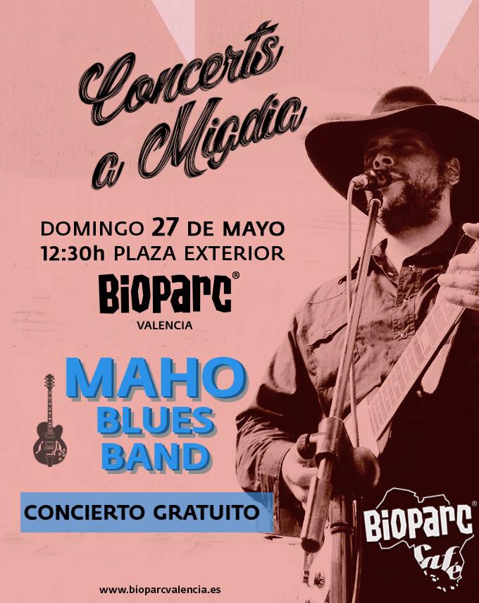 MAHO concierto