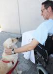 mascota visita dueño