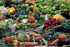 Con-la-comida-que-tiras-cada-dia-se-derrocha-una-banera-de-agua_image_380 (1)