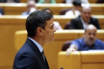 Pedro Sanchez Senado 05