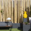 SH Hoteles inaugura la Terraza del SH Valencia Palace (1)