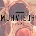 logo-murviedoro (1)