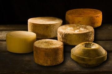 quesos alto palancia
