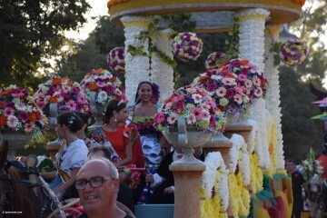 Batalla de Flores de Valencia del 2018 (123)