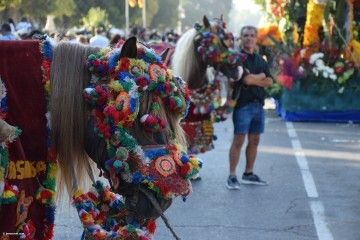 Batalla de Flores de Valencia del 2018 (19)