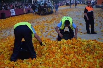 Batalla de Flores de Valencia del 2018 (194)