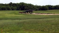 Cocodrilo-gigante-en-un-campo-de-golf-de-Florida-1920-3 (1)