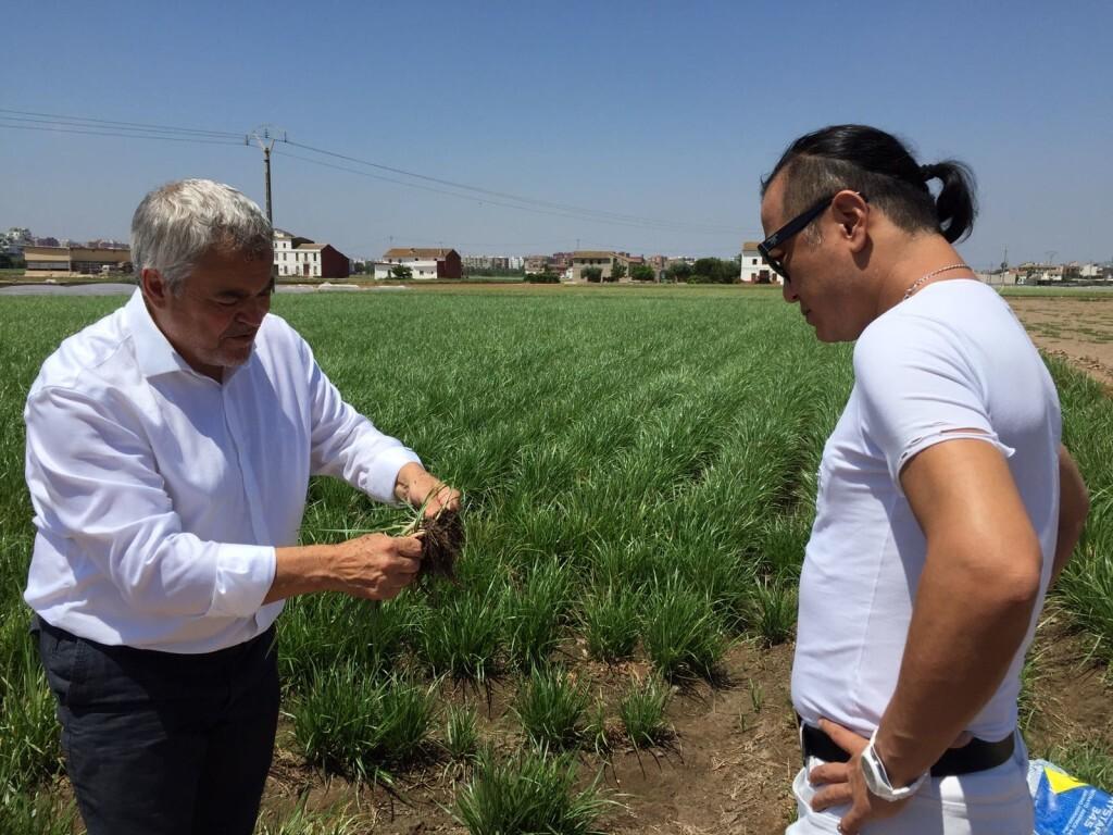 El embajador en el mundo del Té Matcha, Chez Shibata visita Xufatopía (1)